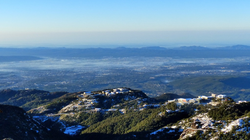 Thrilling Dhanaulti Sightseeing Tour Package