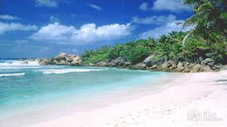 Enthralling Goa Honeymoon Packages From Surat5 Days & 4 Nights